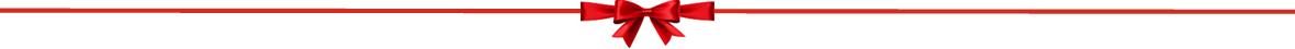 page-separator-christmas-bow
