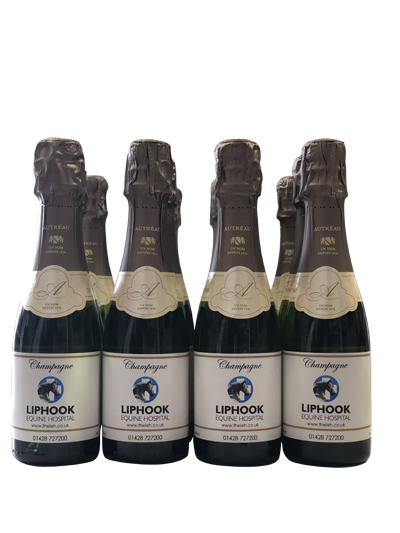 corporate-miniature-champagne-bottles