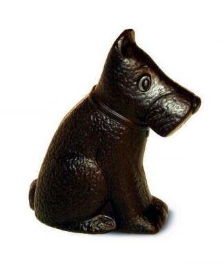 chocolate-dog