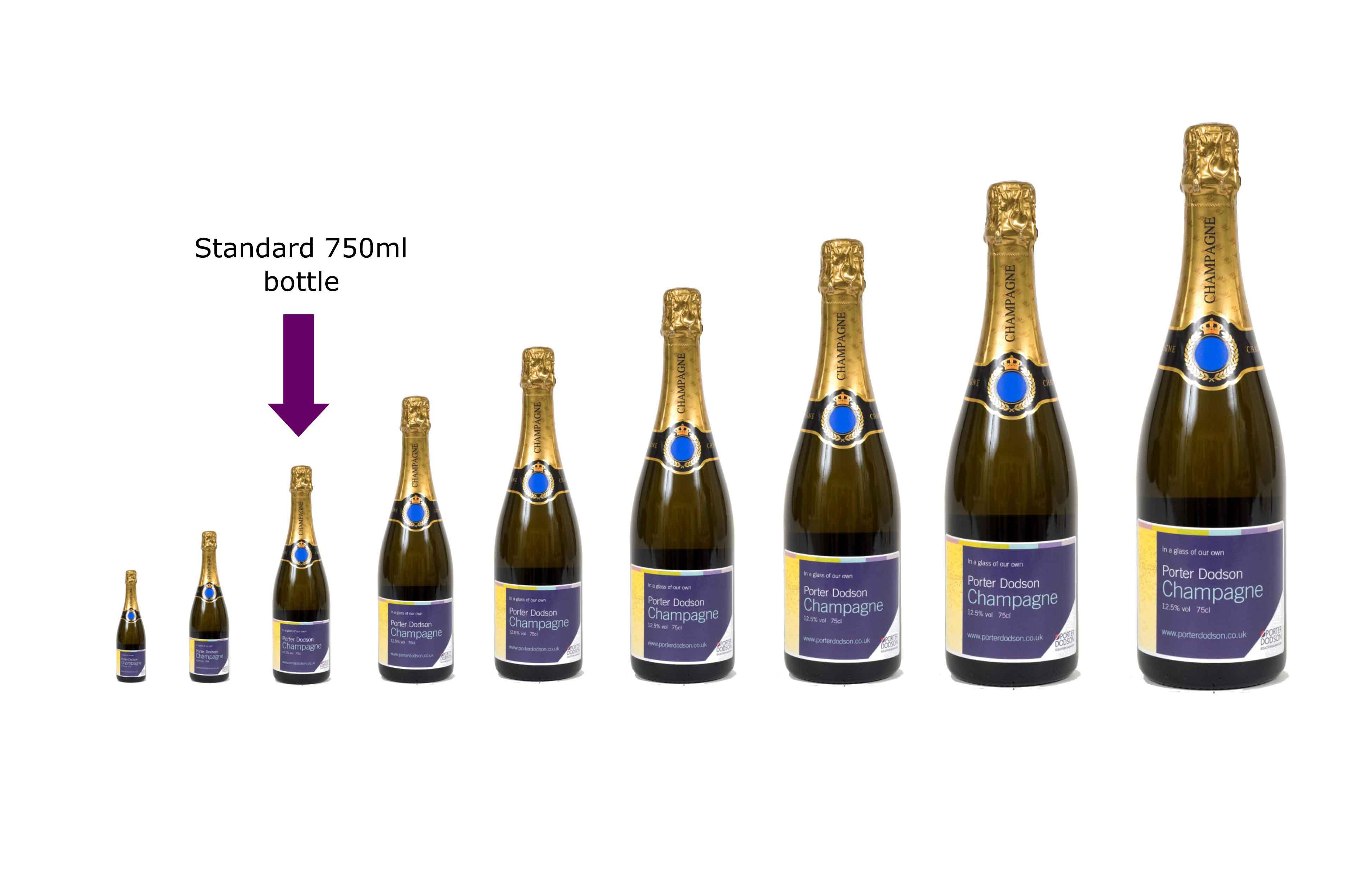 Champagne Bottle Sizes